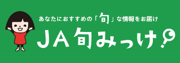 JAグループ (組織)